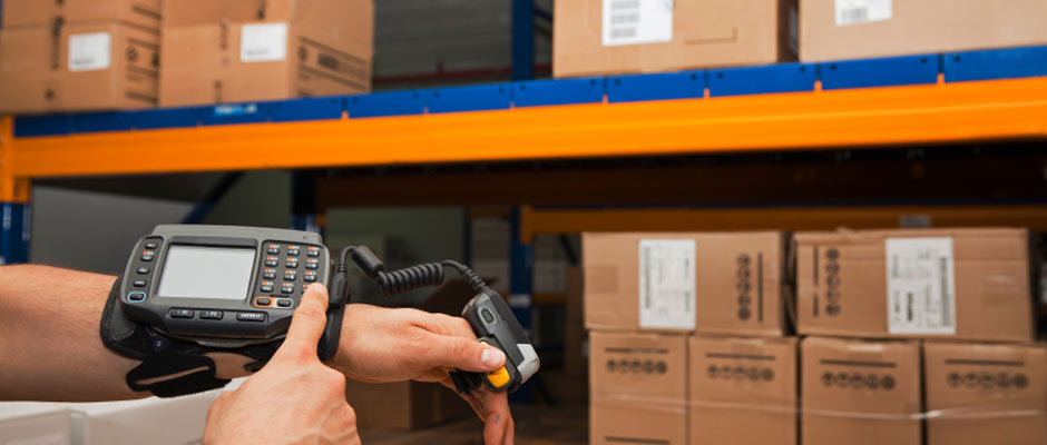 Order Fulfillment and Distribution